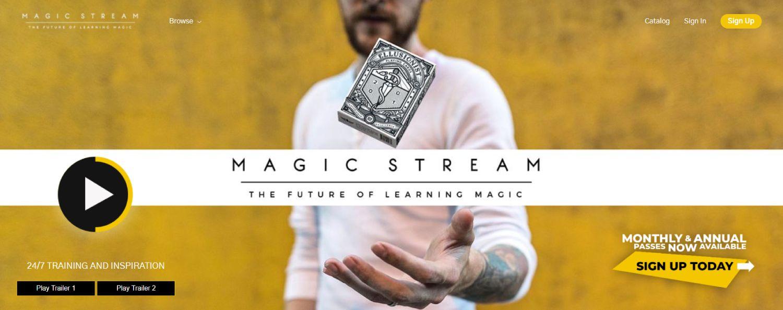 Membership Website Model Magic Stream